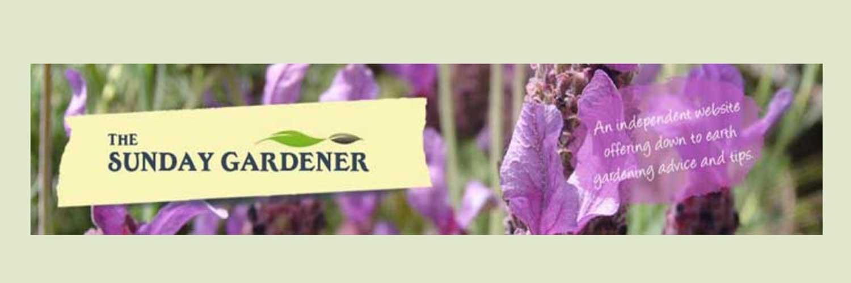Top Gardening blogs of 2017